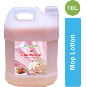 HW-S-10 Strawberry Handwash