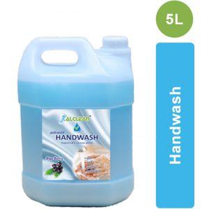 Blueberry Handwash